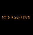 steampunk inscription vector image