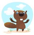 cute funny cartoon beaver vector image