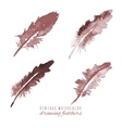 Watercolor design element feather vector image