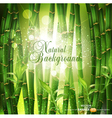 oriental bamboo grove vector image vector image