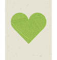 Heart shape with green leaf texture Nature vector image vector image
