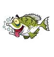 crappie fish vector image