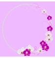Delicate frame with orchid flowers and pearls on vector image vector image
