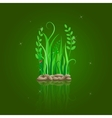 green grass on stone ground vector image vector image