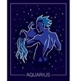Zodiac sign Aquarius on night starry sky vector image