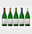 set 5 realistic green bottles of wine with vector image
