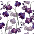 Beautiful orchid flower4 vector image