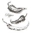 hand drawn chili pepper sketch set ink and vector image
