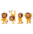 cartoon lions set vector image