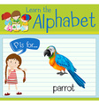 Flashcard letter P is for parrot vector image