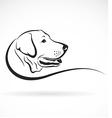 Dog labrador vector image