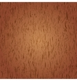 wooden web texture vector image
