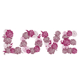 Letters Love with roses vector image vector image