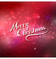 Merry Christmas Holiday vector image