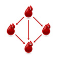 Red blood type chart vector image vector image