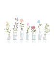 Set of floral pots for your design vector image