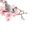 bird jn white vector image