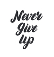 Never give up hand written lettering vector image
