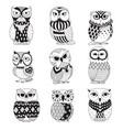 zen owls vector image