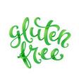 gluten free conceptual handwritten phrase vector image