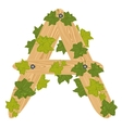 Decorative letter a vector image vector image