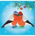 Christmas background with bullfinches and spruce vector image