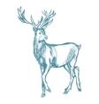 deer sketch blue vintage vector image