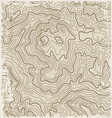 Old Topographic Map vector image