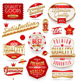 Guaranteed and premium quality - labels vector image