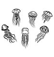 Different underwater jellyfishes vector image