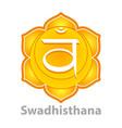 chakra swadhisthana isolated on white vector image
