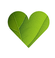 Green Leaf Veins Texture Heart Shaped Earth Day vector image