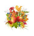 autumn composition vector image