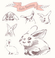 set cute bunnies easter rabbits draw sketch vector image