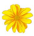 digital painting of flower vector image
