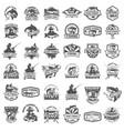 big set of fishing icons carp fishing trout vector image