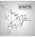 Hummingbirds Geometric background vector image