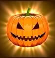 pumpkin for halloween on magic light background vector image