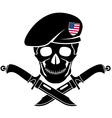 sign of special forces of USA vector image