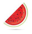 Watermelon slice vector image vector image