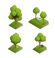 tree swing icon set vector image