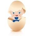 baby boy in broken egg vector image