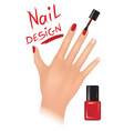nail polish design beauty salon background womans vector image