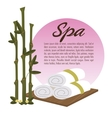 spa beauty towel over wooden bamboo vector image