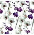 Beautiful orchid flower7 vector image