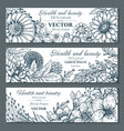 set of three horizontal banners with beautiful vector image