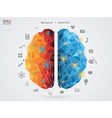 a brain on background vector image