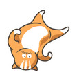 cartoon cat kitten upside down on head flat vector image