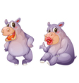 Cartoon Female Hippos vector image