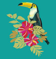 toucan embroidery bird vector image